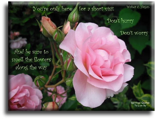 You're only here for a short visit. Don't hurry, don't worry. And be sure to smell the flowers along the way. - Walter C. Hagen - Spiritual Quotes To Live By