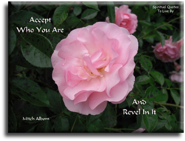 Mitch Albom quote: Accept who you are... and revel in it. - Spiritual Quotes To Live By