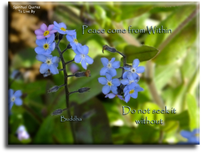 Buddha quote: Peace comes from within. Do not seek it without. Spiritual Quotes To Live By