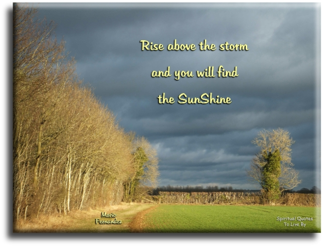 Mario Fernandez quote: Rise above the storm and you will find the sunshine. - Spiritual Quotes To Live By
