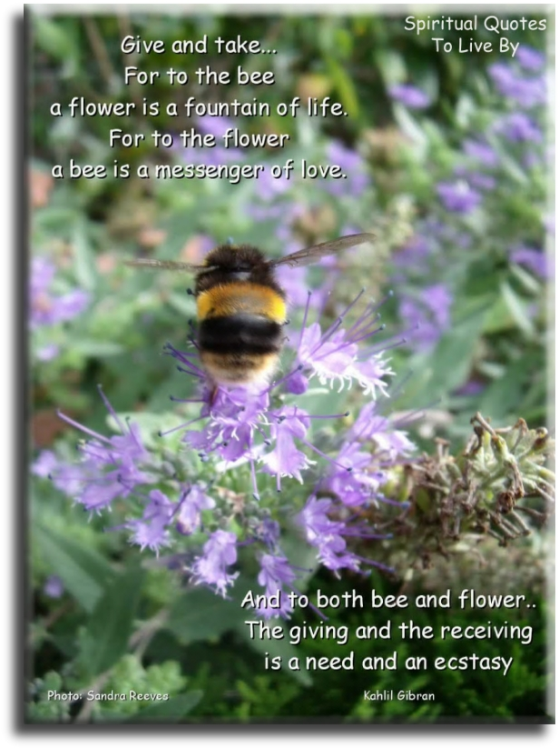 Give And Take, for to the bee a flower is a fountain of life, for to the flower a bee is a messenger of love.. - Kahlil Gibran - Spiritual Quotes To Live By