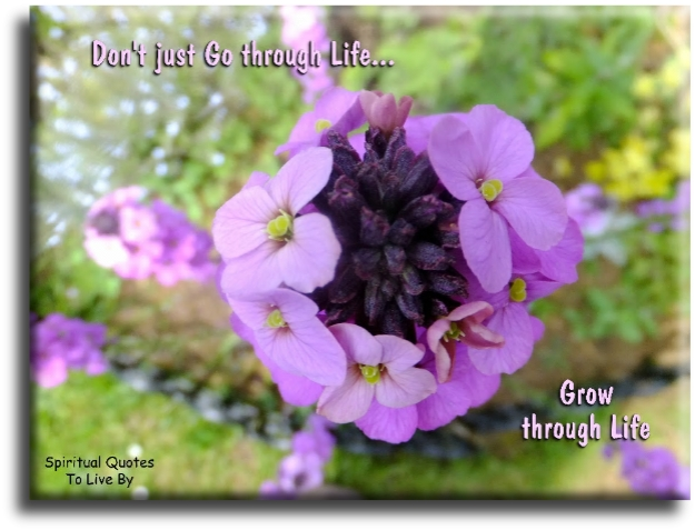 Don't go through life, grow through life - Eric Butterworth - Spiritual Quotes To Live By