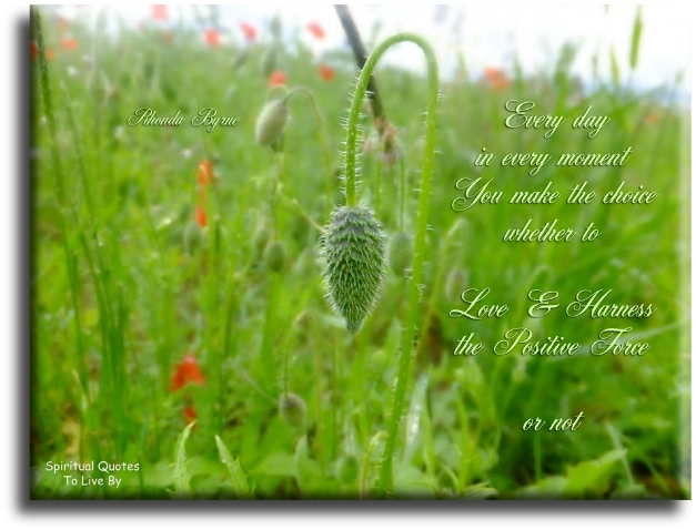 Rhonda Byrne quote: Every day in every moment, you make the choice whether to love and harness the positive force... or not. Spiritual Quotes To Live By