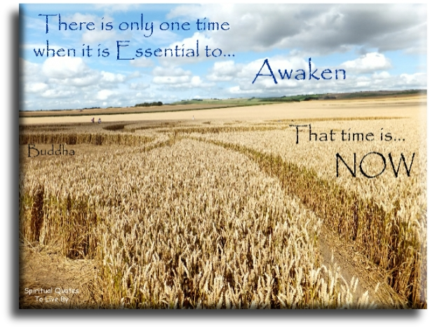 Buddha quote: There is only one time when it is essential to Awaken, that time is NOW. - Spiritual Quotes To Live By