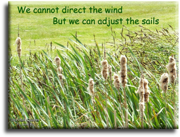 We cannot direct the wind...  but we can adjust the sails. (unknown) - Spiritual Quotes To Live By