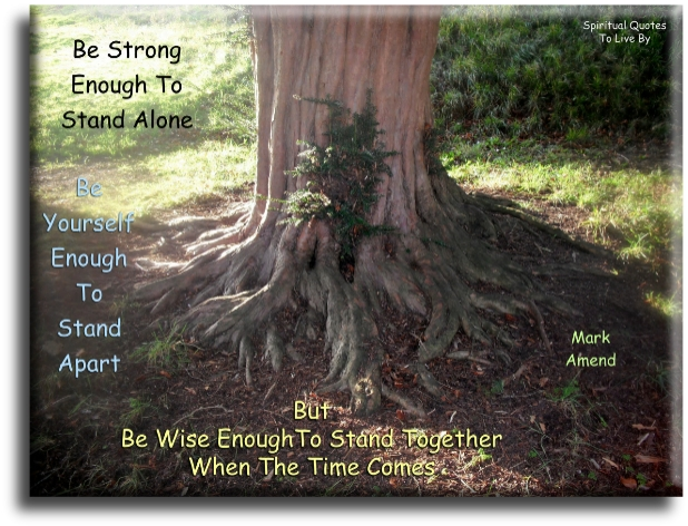 Mark Amend quote: Be strong enough to stand alone. Be yourself enough to stand apart. But be wise enough to stand together when the time comes. Spiritual Quotes To Live By