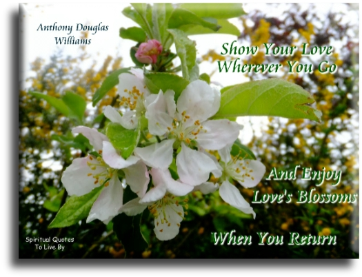 Anthony Douglas Williams quote: Show your love wherever you go and enjoy love's blossoms whenever you return. Spiritual Quotes To Live By
