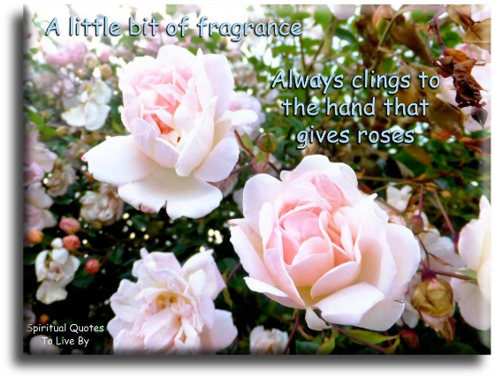 Proverb: A little bit of fragrance always clings to the hand that gives roses. - Spiritual Quotes To Live By