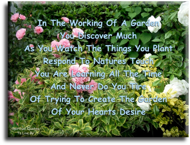 In the workings of a garden you discover much, as you watch the things you plant respond to nature's touch, you are learning all the time and never do you tire... - Spiritual Quotes To Live By