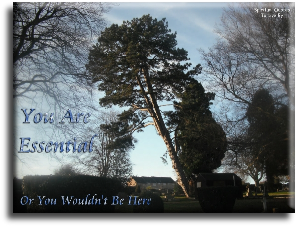You are essential, or you wouldn't be here - Spiritual Quotes To Live By