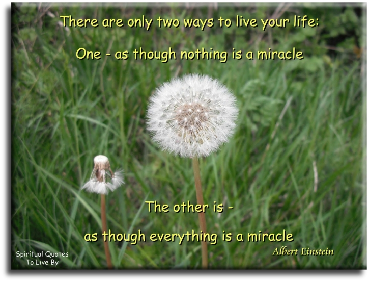 There are only two ways to live your life, one, as though nothing is a miracle, the other is as though everything is a miracle - Albert Einstein - Spiritual Quotes To Live By