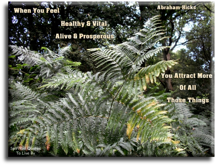 Abraham-Hicks quote: When you FEEL healthy and vital and alive and prosperous, you attract more of all those things. - Spiritual Quotes To Live By