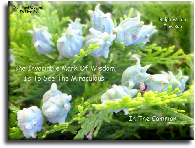 Ralph Waldo Emerson quote: The invariable mark of wisdom is to see the miraculous in the common. Spiritual Quotes To Live By