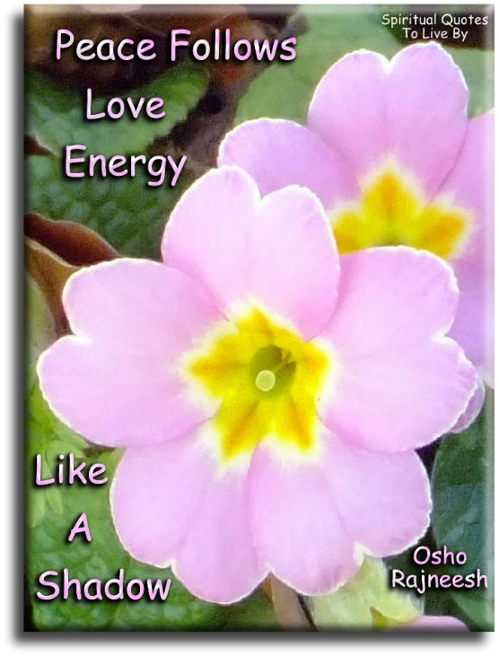 Quote About Peace And Love Enchanting Positive Peace Quotes