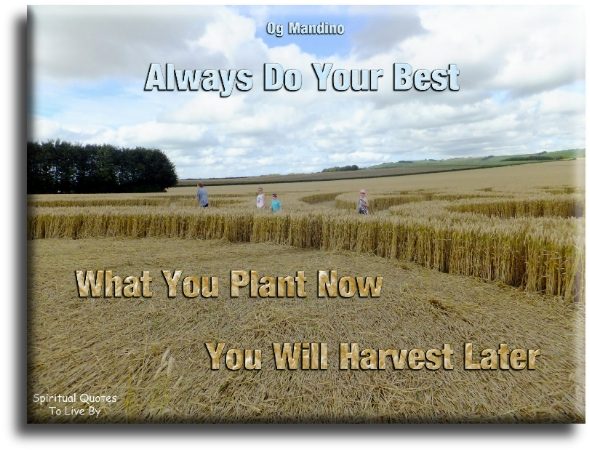 Og Mandino quote: Always do your best.  What you plant now, you will harvest later. Spiritual Quotes To Live By