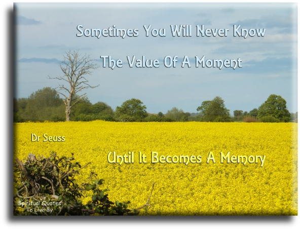 Dr Seuss quote: Sometimes you will never know the value of a moment until it becomes a memory. - Spiritual Quotes To Live By