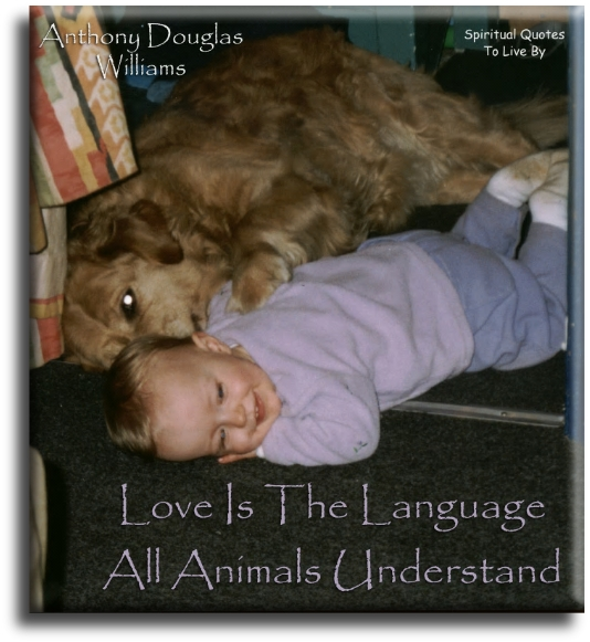 Anthony Douglas Williams quote: Love is the language all animals understand. - Spiritual Quotes To Live By