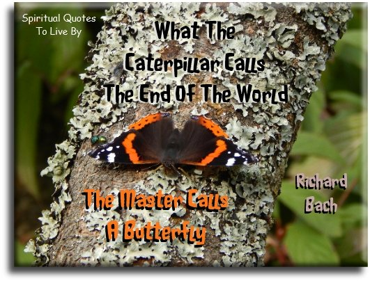 Richard Bach quote: What the caterpillar calls the end of the world, the master calls a butterfly. - Spiritual Quotes To Live By