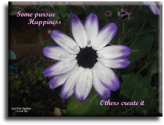 Some pursue happiness...  Others create it. (unknown) - Spiritual Quotes To Live By