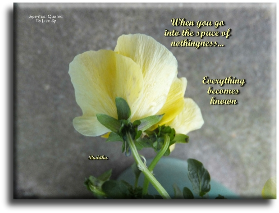 Buddha quote: When you go into the space of nothingness, everything becomes known. - Spiritual Quotes To Live By
