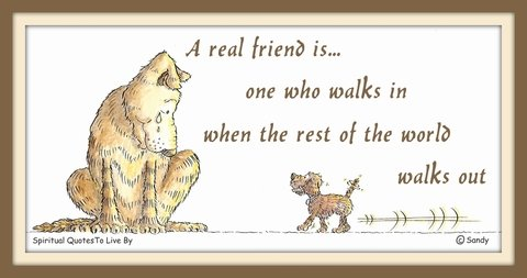 A real friend is one who walks in when the rest of the world walks out - illustration by Sandra Reeves - Spiritual Quotes To Live By