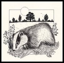 Badger by Sandra Reeves