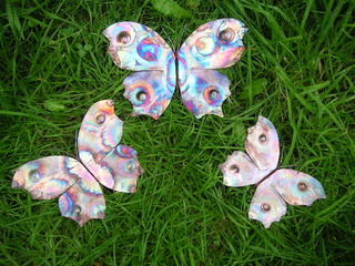 copper butterflies by Sandra Reeves